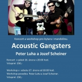 Acoustic Gangsters