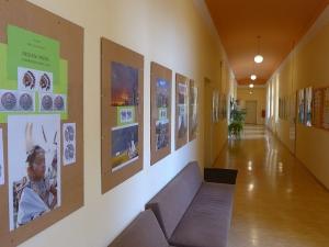 Výstava indiáni prérií a národní parky USA