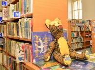 Oddělení pro děti a mládež - knihy